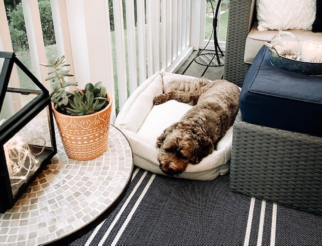 Screened-In Porch Refresh